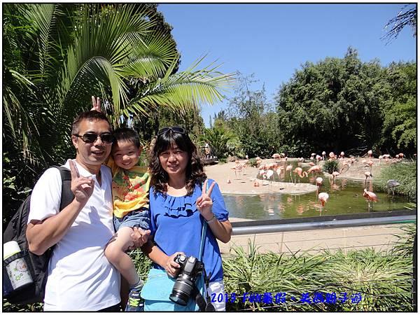 美西旅行08-SD Zoo-03.jpg