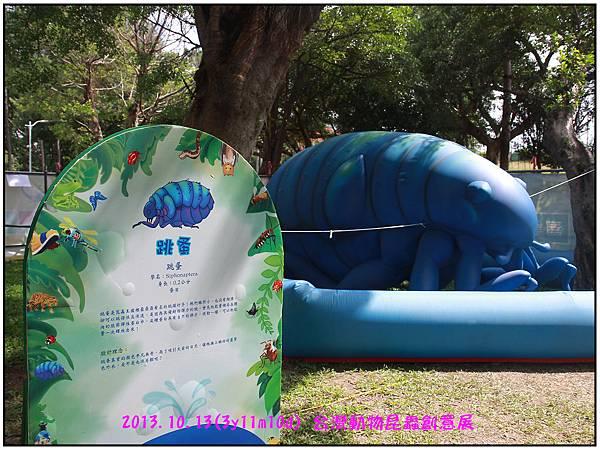 昆蟲展-27.jpg
