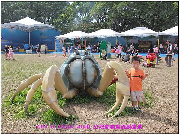 昆蟲展-28.jpg