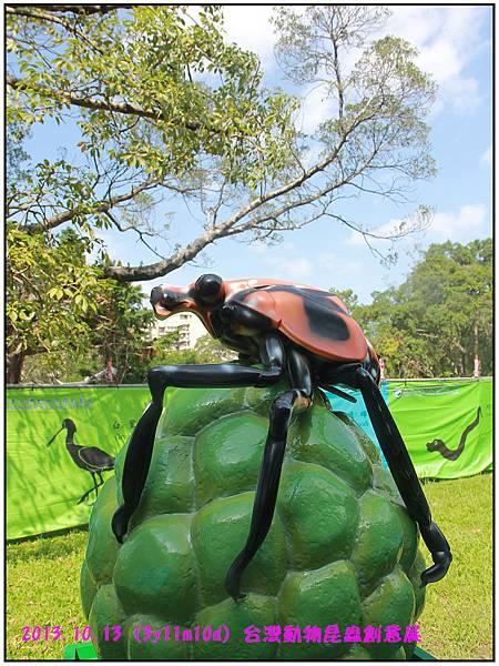 昆蟲展-47.jpg