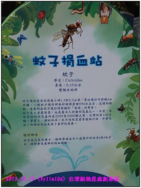 昆蟲展-101.jpg