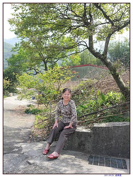 迎媽祖 (33).jpg