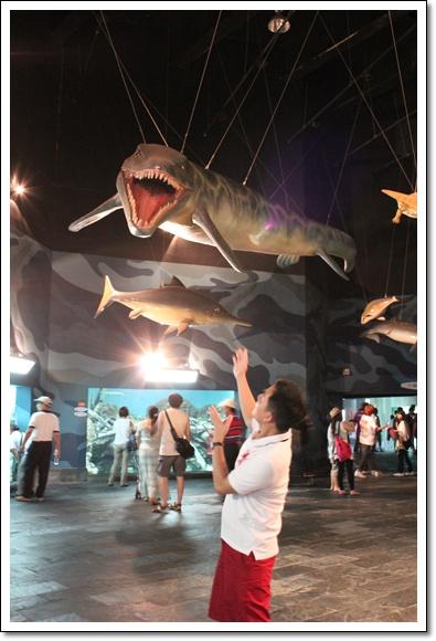 E拔演怕魚.jpg