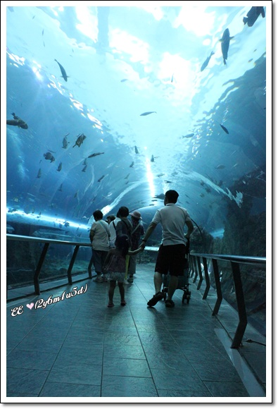 父女海底隧道.jpg