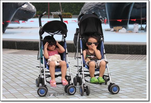 兩娃ㄦ戴墨鏡坐推車.jpg