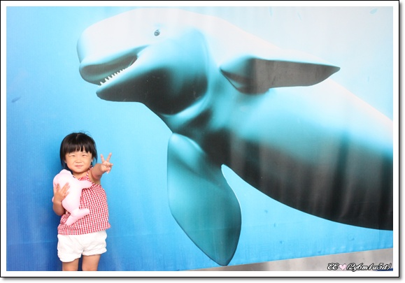 與框中的小白鯨合照.jpg