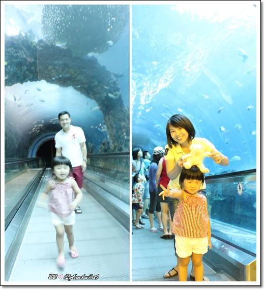 隧道內兩圖.jpg