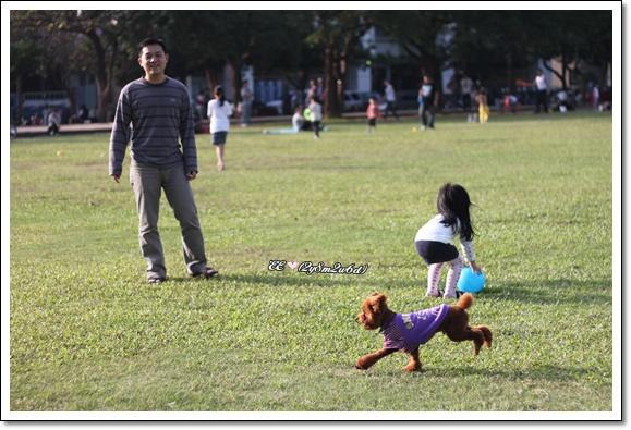 還有狗ㄦ在一旁奔跑.jpg