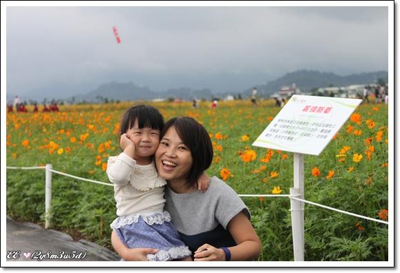 母女與黃波斯菊.jpg