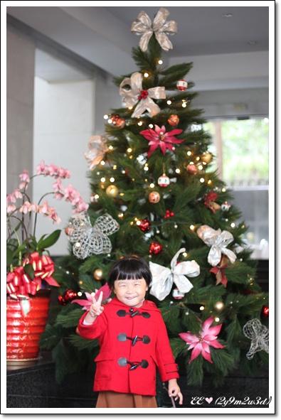 1211社區的耶誕樹.jpg