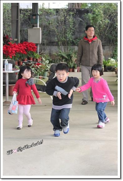 小孩們在香草園奔跑.jpg