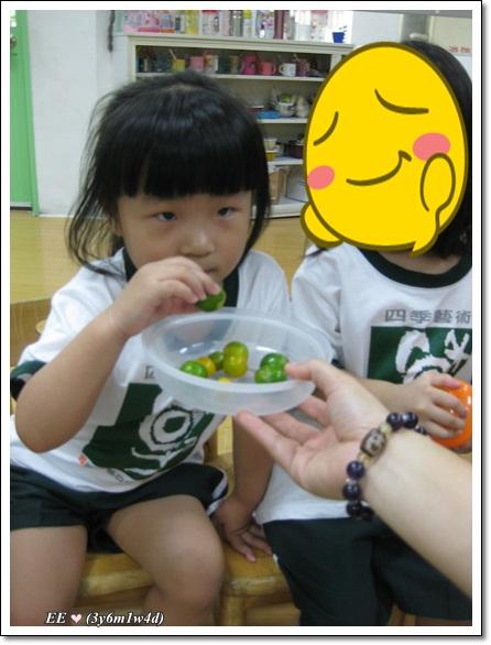 0904EE聞校園裡有甚麼水果呢(縮)