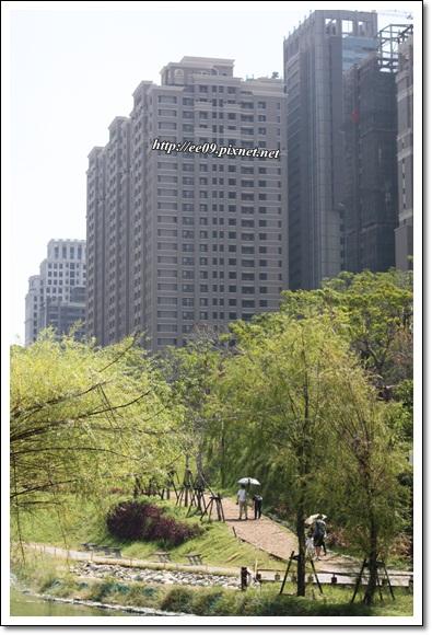 高樓前的綠地