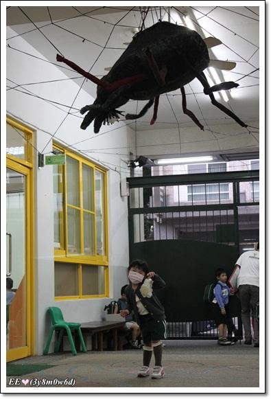 EE與大蜘蛛