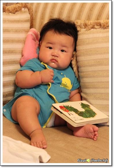 依著沙發看書