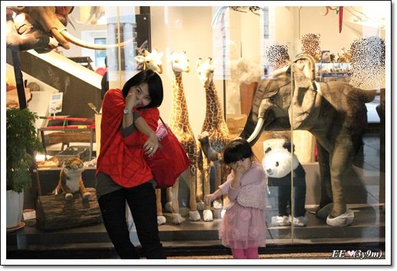 母女學大象