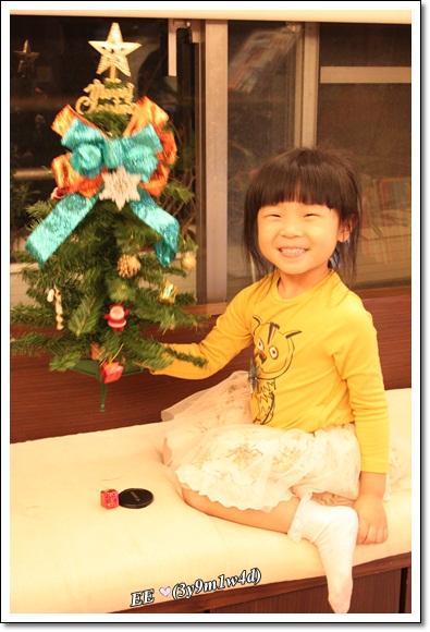 EE舉耶誕樹