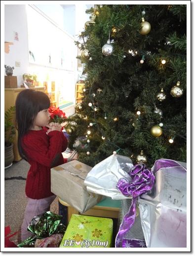1224EE耶誕樹許願(編)