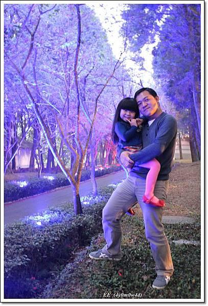 父女紫色林