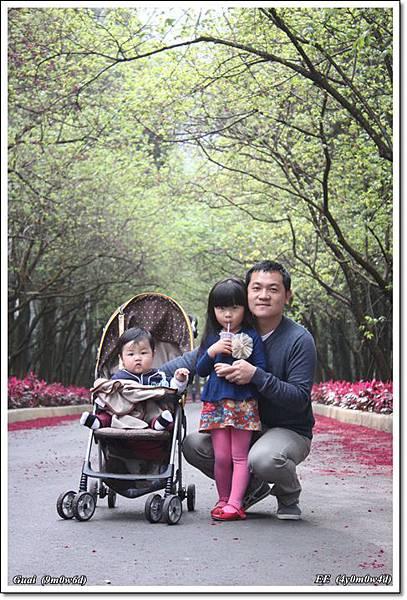 父子女兩排樹美景中