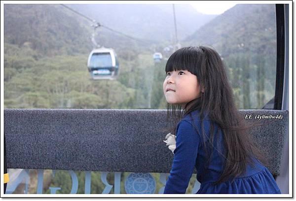 從纜車抬頭看風景