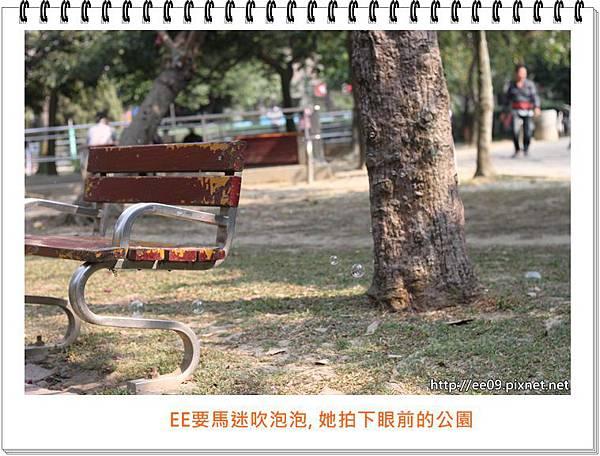 0309拍的公園