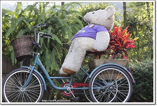 熊熊騎腳踏車.JPG