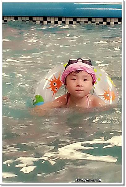 EE好厲害的游泳樣
