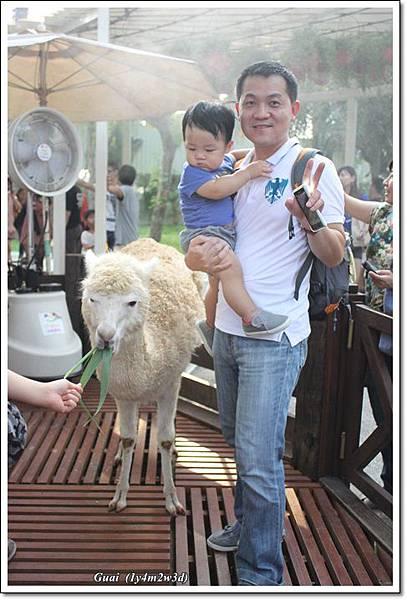 父子與草泥馬
