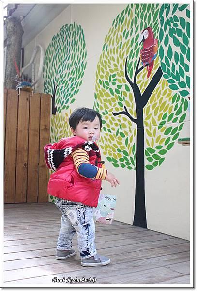 鳥園入口前的牆.JPG