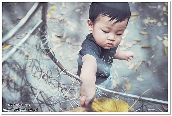 乖乖拿鞦韆上樹葉.jpg