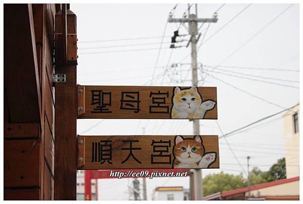 貓貓指標.JPG