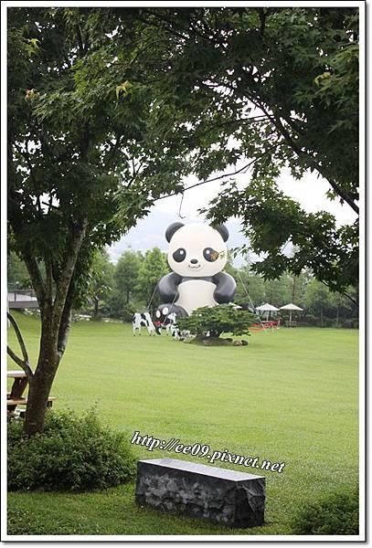 遠處熊貓.JPG