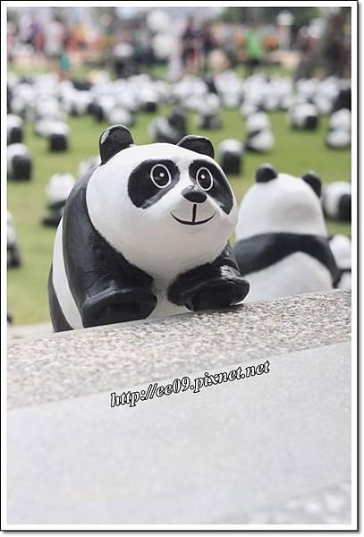 0830快閃貓熊-10.JPG
