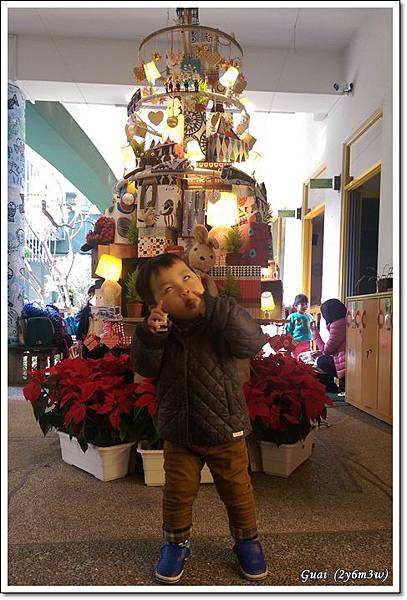 乖聖誕樹-1