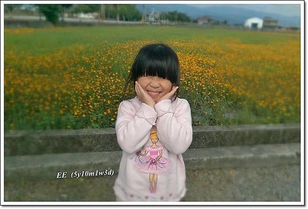 花海+落葉松-1.jpg