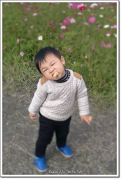 花海+落葉松-3.jpg