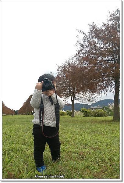 花海+落葉松-17.jpg