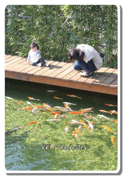 二泉湖畔馬麻與EE看魚.jpg