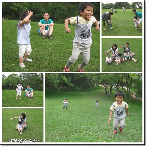 大草地玩耍去.jpg