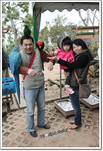 全家與鸚鵡+Eric表情.jpg