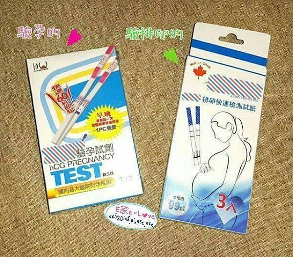 驗孕試紙v.s.排卵試紙