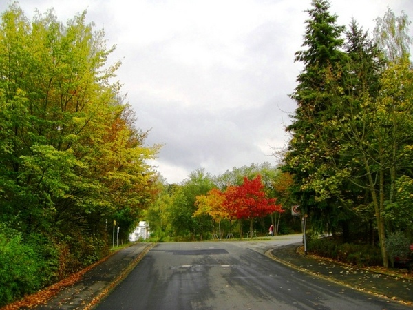 宿舍前的馬路