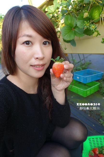 DSC00279_副本.jpg