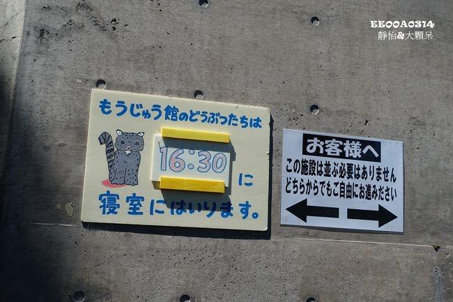 DSC01943_副本