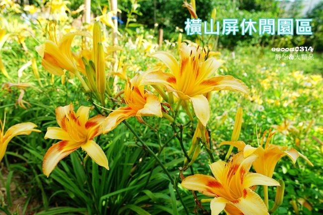 DSC03391_副本