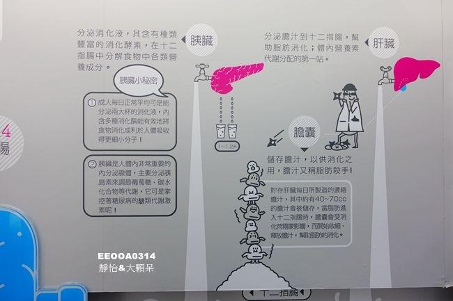 DSC05234_副本