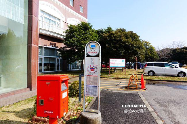 DSC02262_副本.jpg