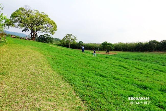 DSC04710_副本.jpg