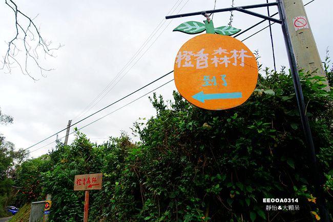 DSC07265_副本.jpg